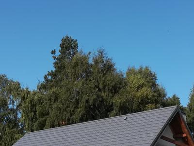 pokryty czarny dach 2